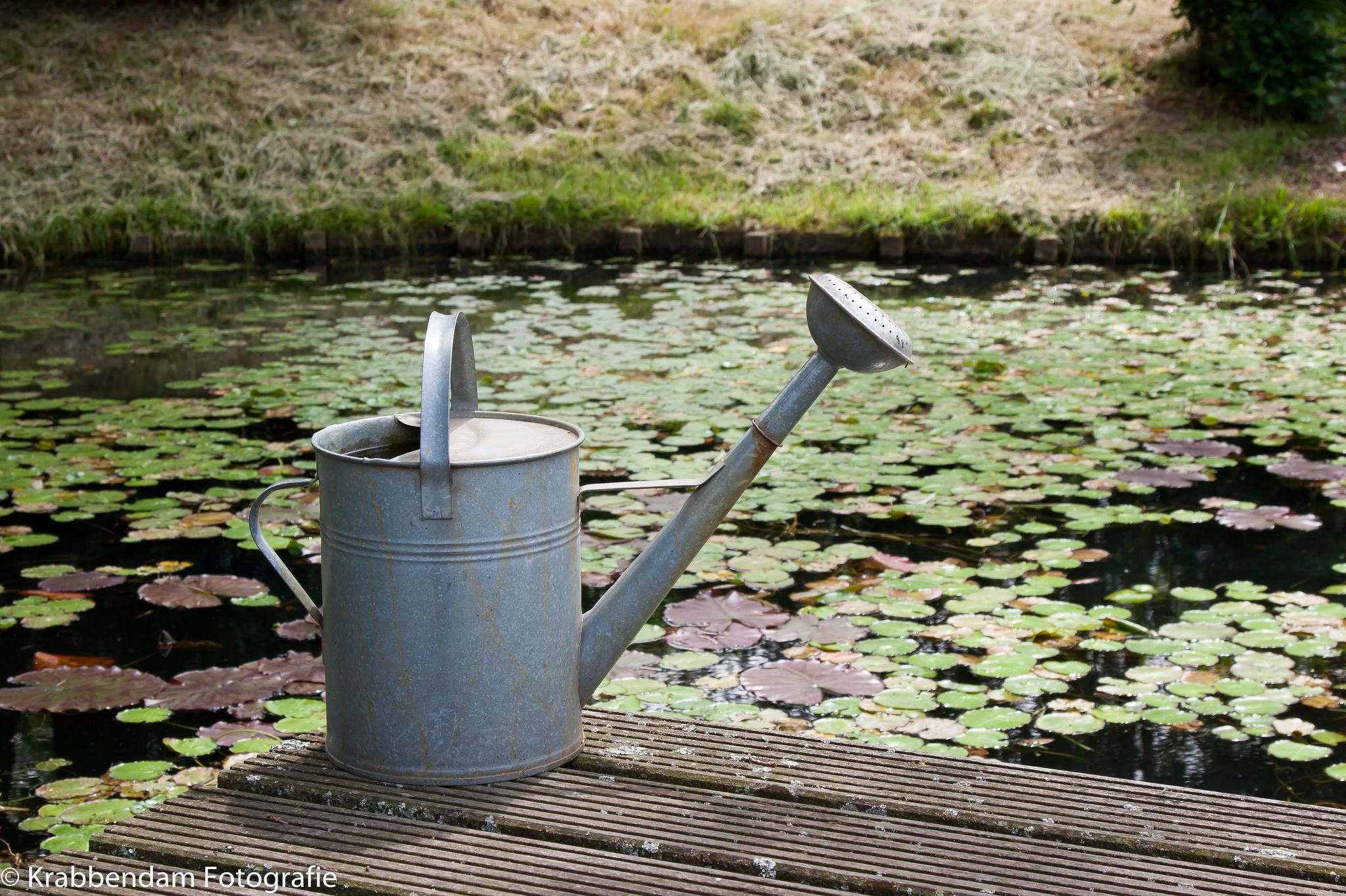 Waterneeded-large